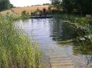 Schwimmteich Ritzlhof_3